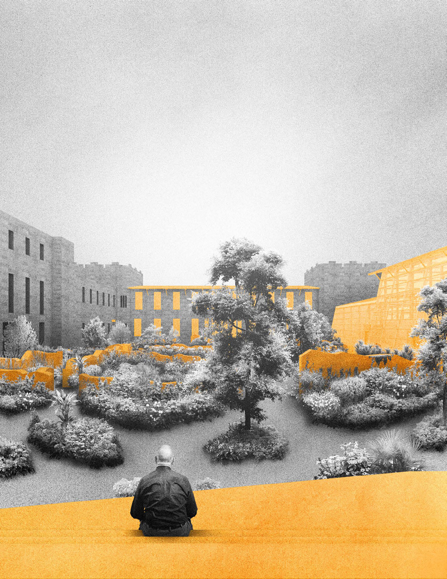 The Ruin and the Garden